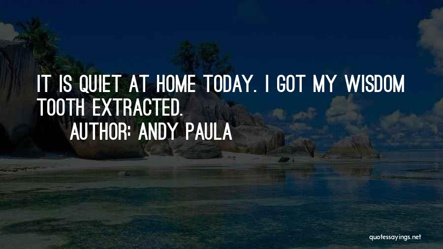 Andy Paula Quotes 119556