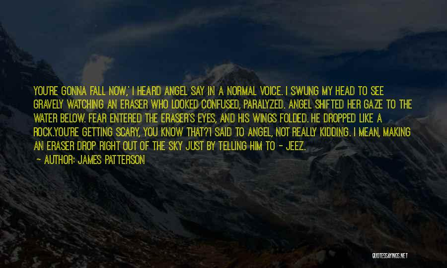 Angel Getting Wings Quotes By James Patterson