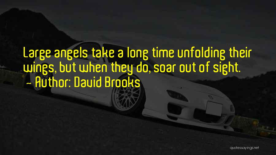 Angels Wings Quotes By David Brooks