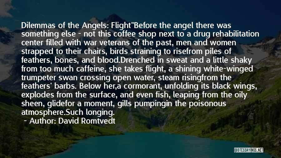 Angels Wings Quotes By David Romtvedt