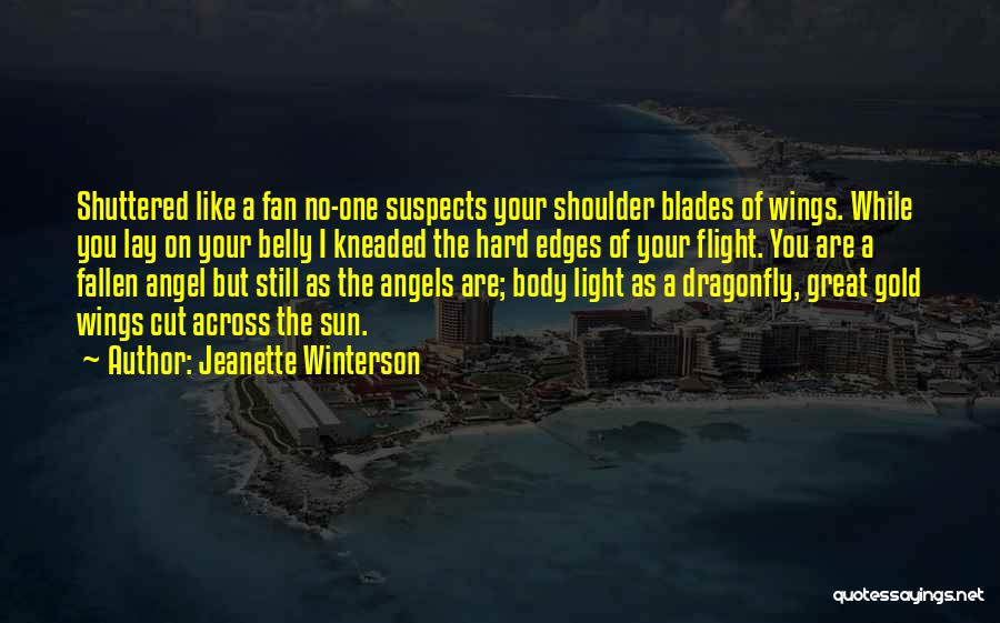 Angels Wings Quotes By Jeanette Winterson