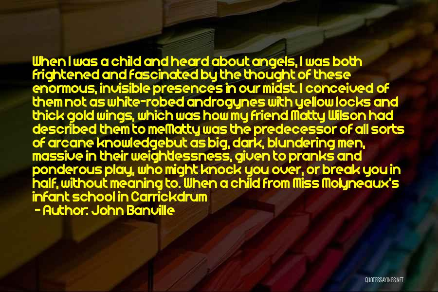 Angels Wings Quotes By John Banville