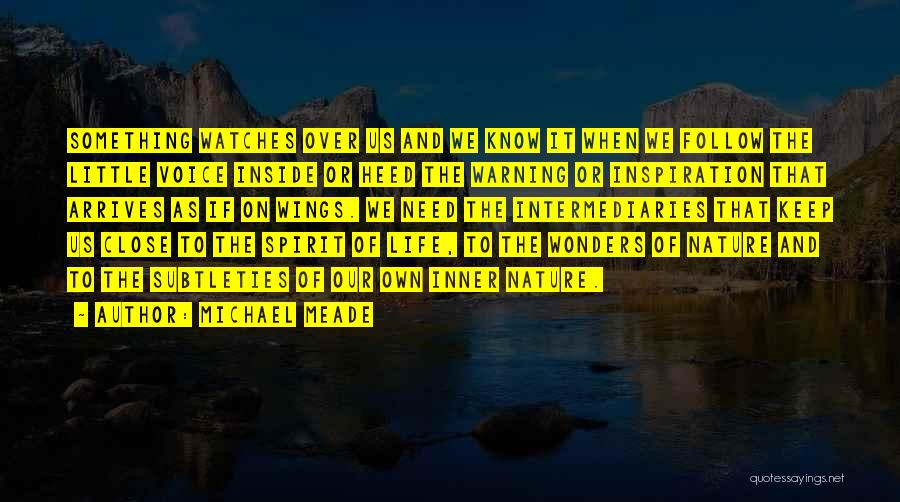 Angels Wings Quotes By Michael Meade