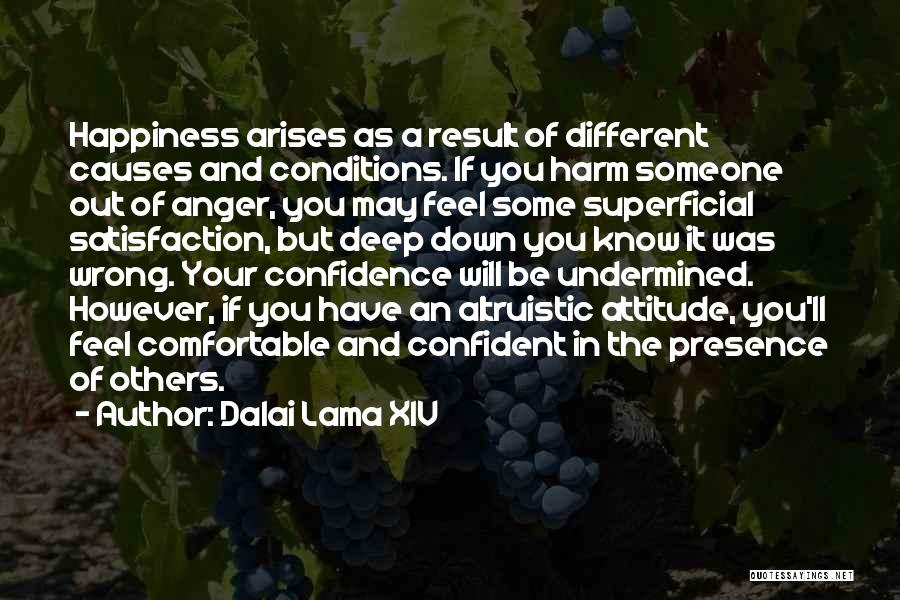 Anger And Happiness Quotes By Dalai Lama XIV