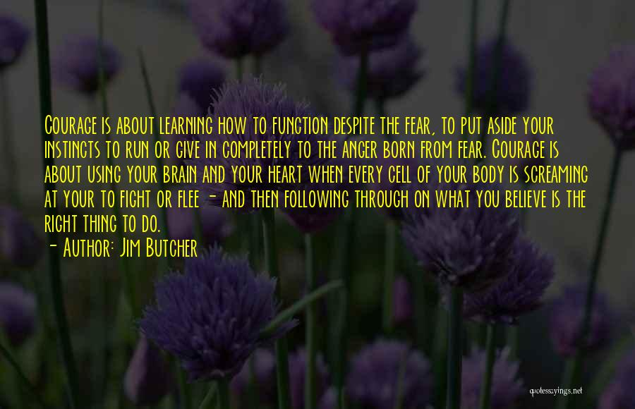 Anger In Your Heart Quotes By Jim Butcher