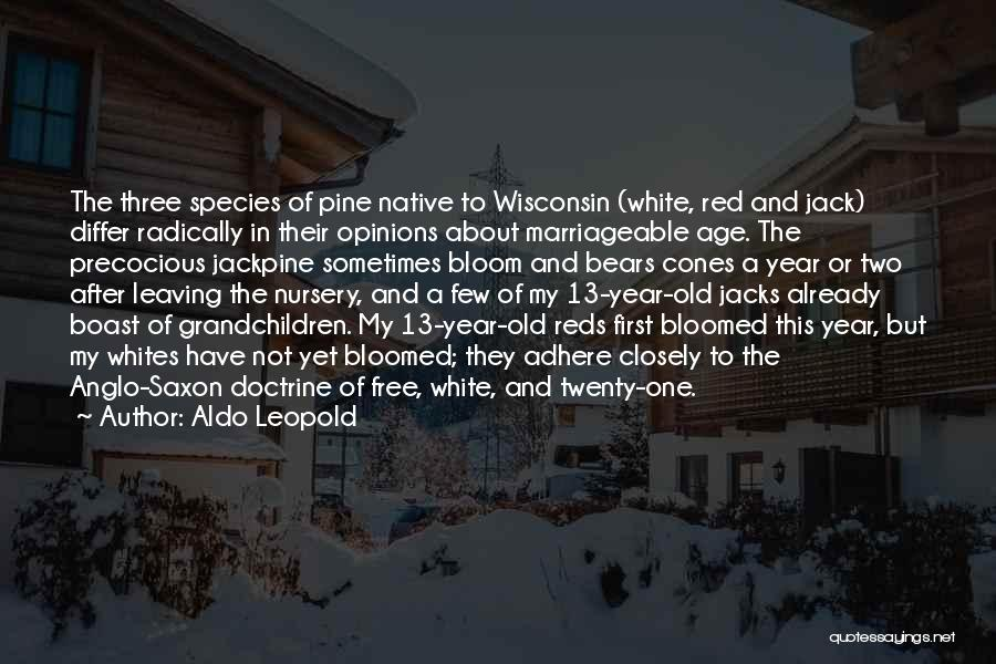 Anglo Saxon Quotes By Aldo Leopold