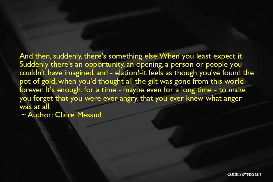 Angry Person Quotes By Claire Messud