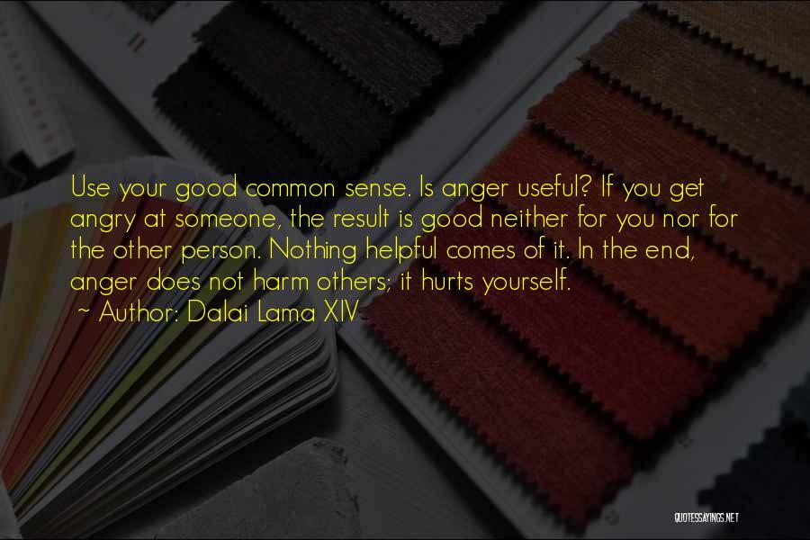 Angry Person Quotes By Dalai Lama XIV