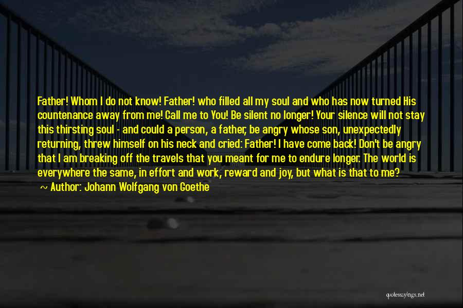 Angry Person Quotes By Johann Wolfgang Von Goethe