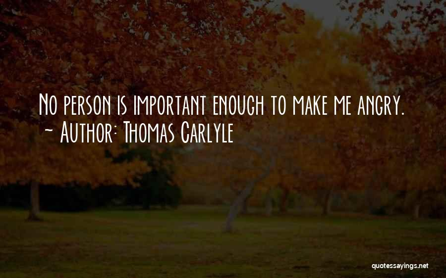 Angry Person Quotes By Thomas Carlyle