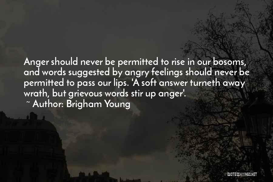 Angry Words Quotes By Brigham Young