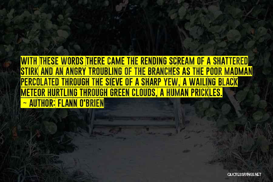 Angry Words Quotes By Flann O'Brien