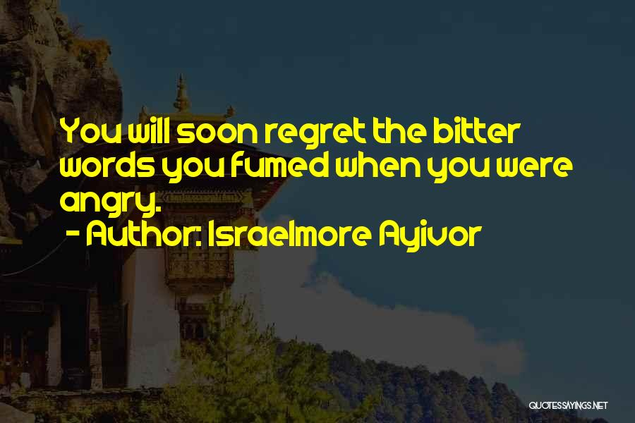 Angry Words Quotes By Israelmore Ayivor
