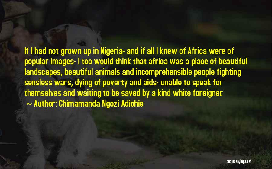 Animals Dying Quotes By Chimamanda Ngozi Adichie