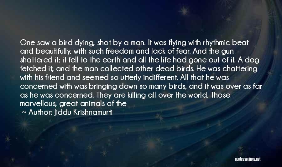 Animals Dying Quotes By Jiddu Krishnamurti