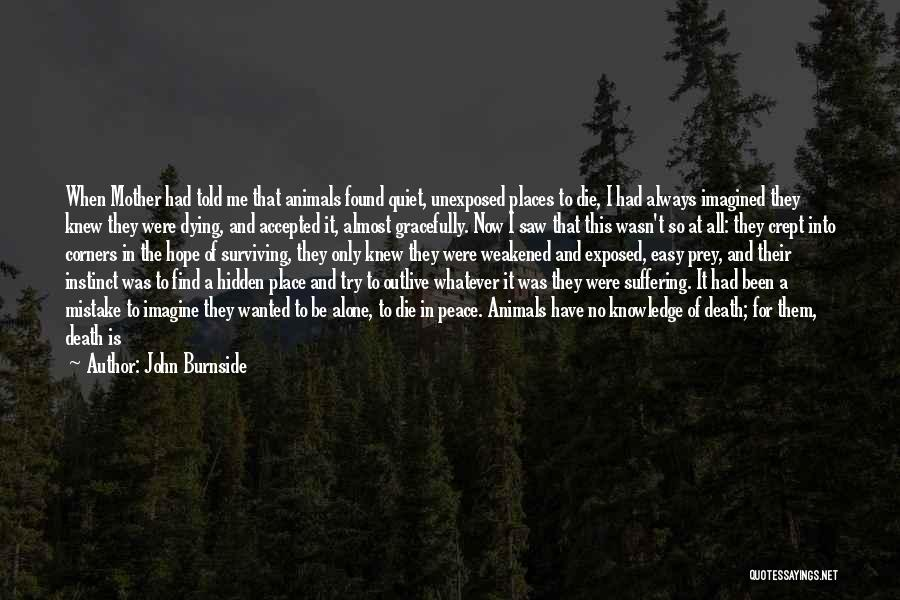 Animals Dying Quotes By John Burnside