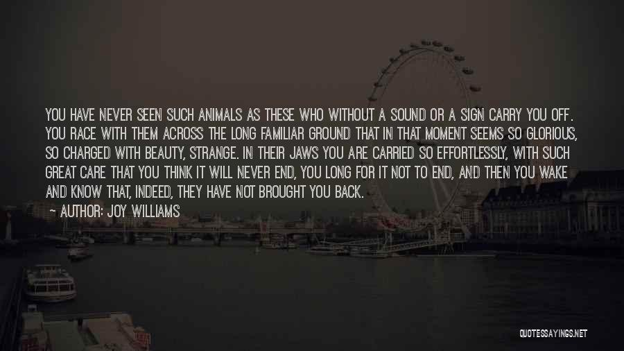 Animals Dying Quotes By Joy Williams