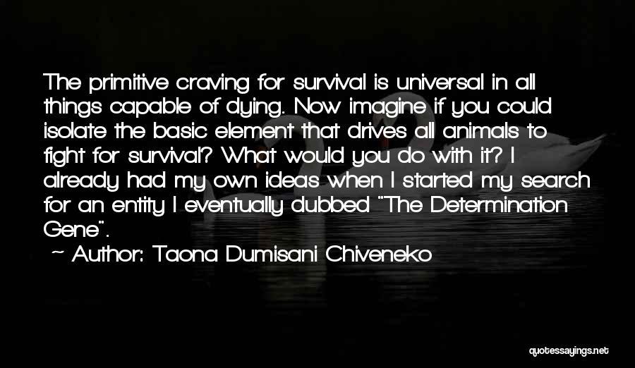 Animals Dying Quotes By Taona Dumisani Chiveneko