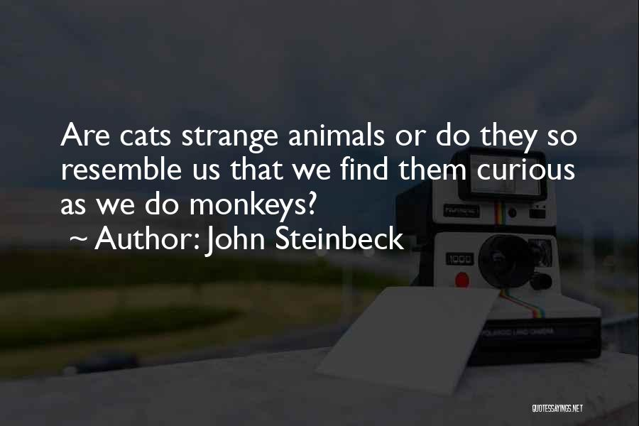 Animals Quotes By John Steinbeck