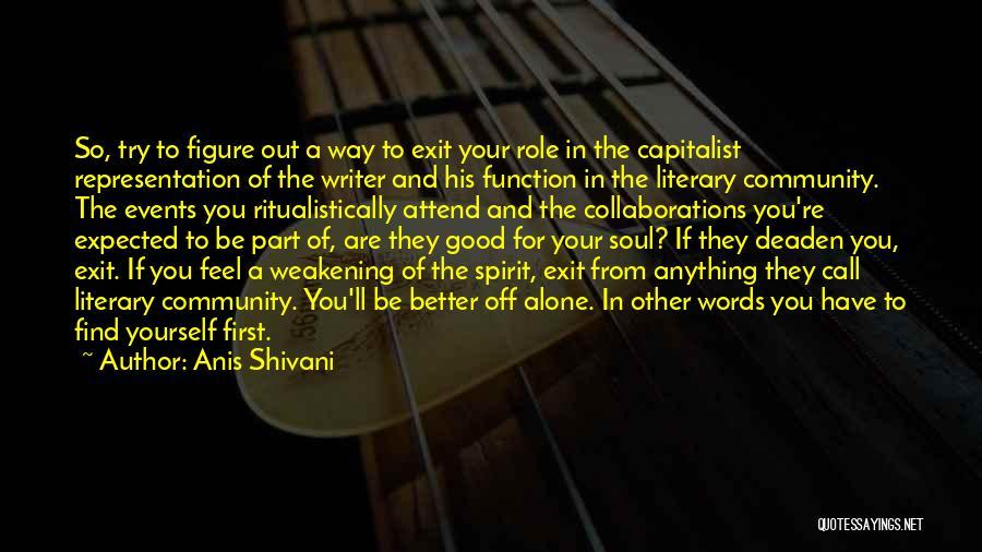 Anis Shivani Quotes 1542581