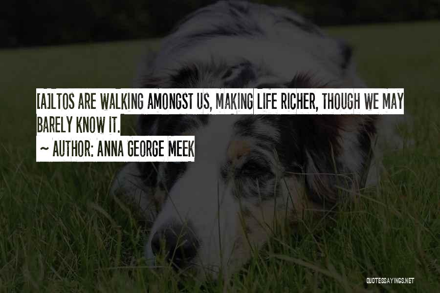 Anna George Meek Quotes 1259445