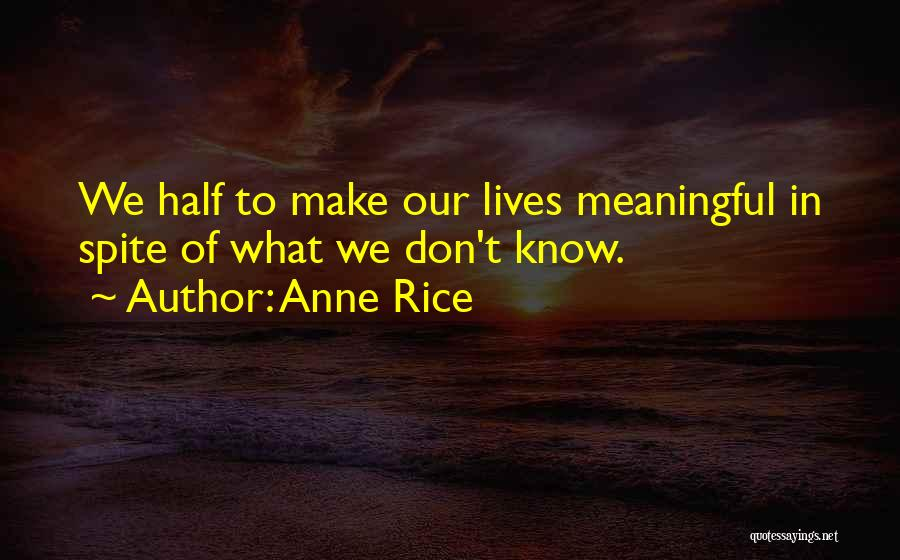 Anne Rice Quotes 239638