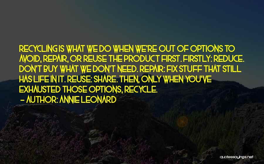 Annie Leonard Quotes 1477396