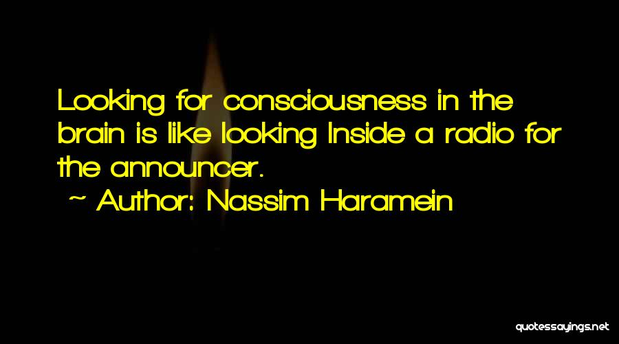 Announcer Quotes By Nassim Haramein