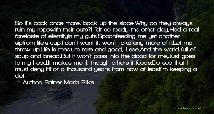 Another Day In My Life Quotes By Rainer Maria Rilke