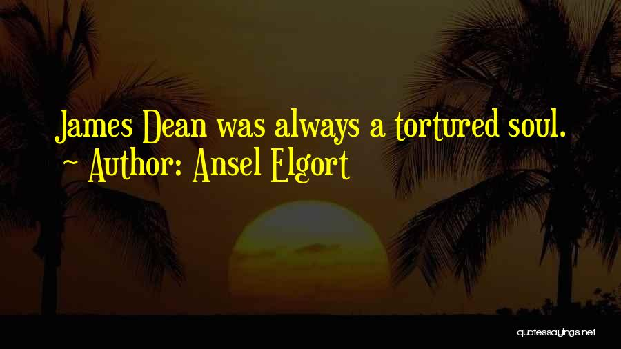 Ansel Elgort Quotes 1903267