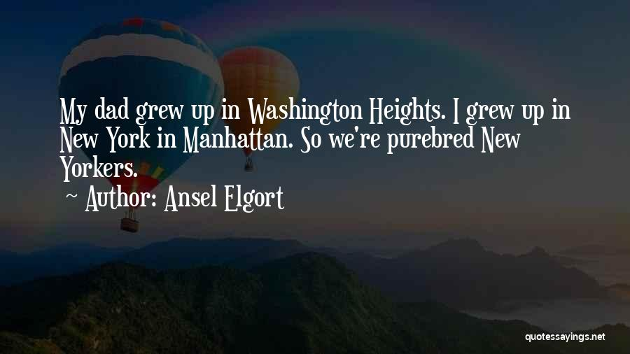 Ansel Elgort Quotes 774758
