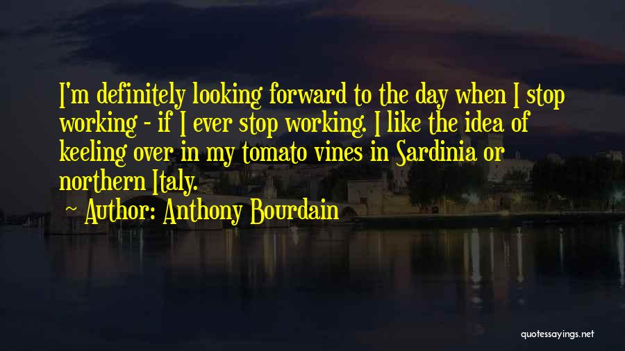 Anthony Bourdain Quotes 1160562