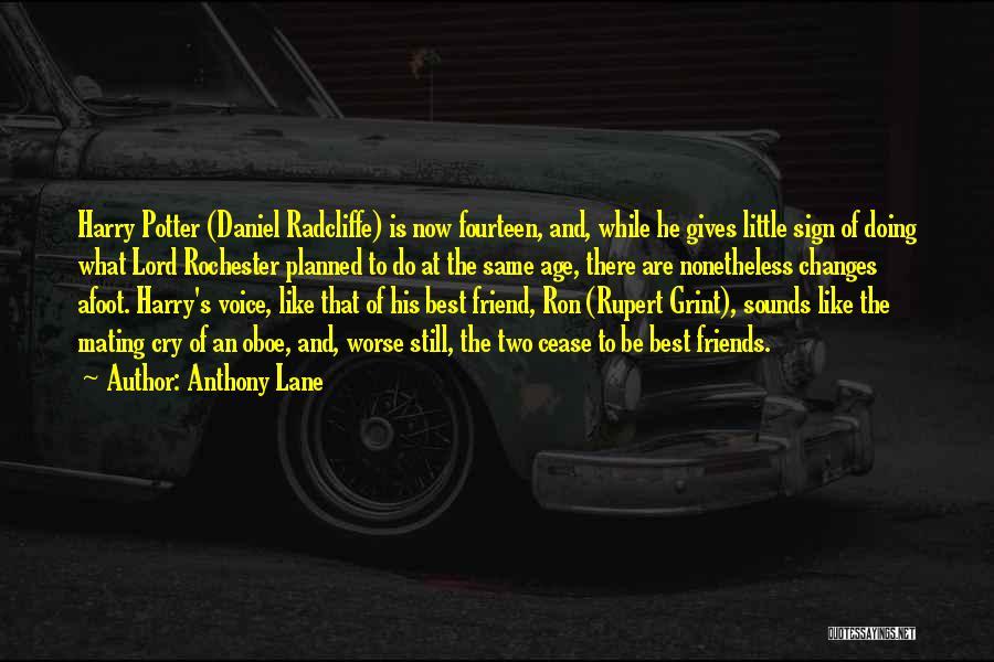 Anthony Lane Quotes 1878578