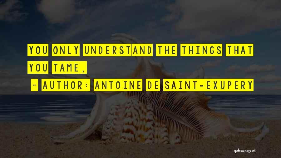 Antoine De Saint-Exupery Quotes 1083248