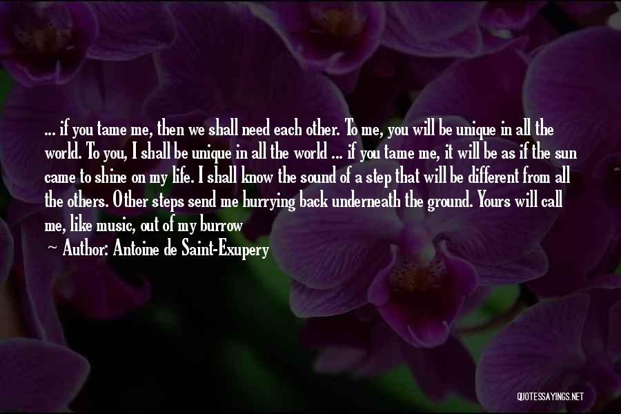 Antoine De Saint-Exupery Quotes 1459137