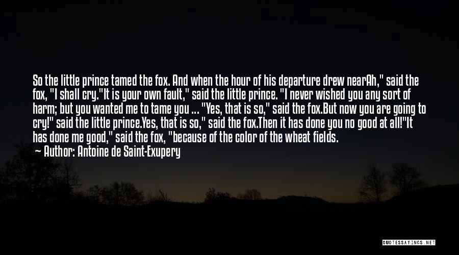 Antoine De Saint-Exupery Quotes 1984969