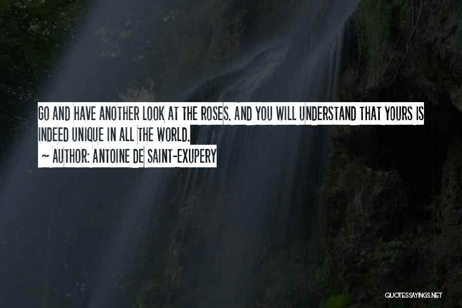 Antoine De Saint-Exupery Quotes 2093663