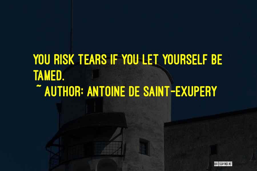 Antoine De Saint-Exupery Quotes 213296