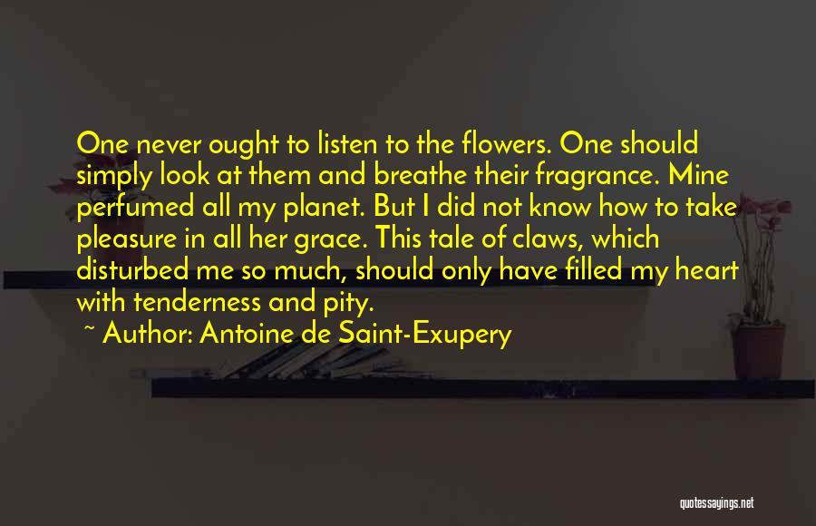 Antoine De Saint-Exupery Quotes 217354