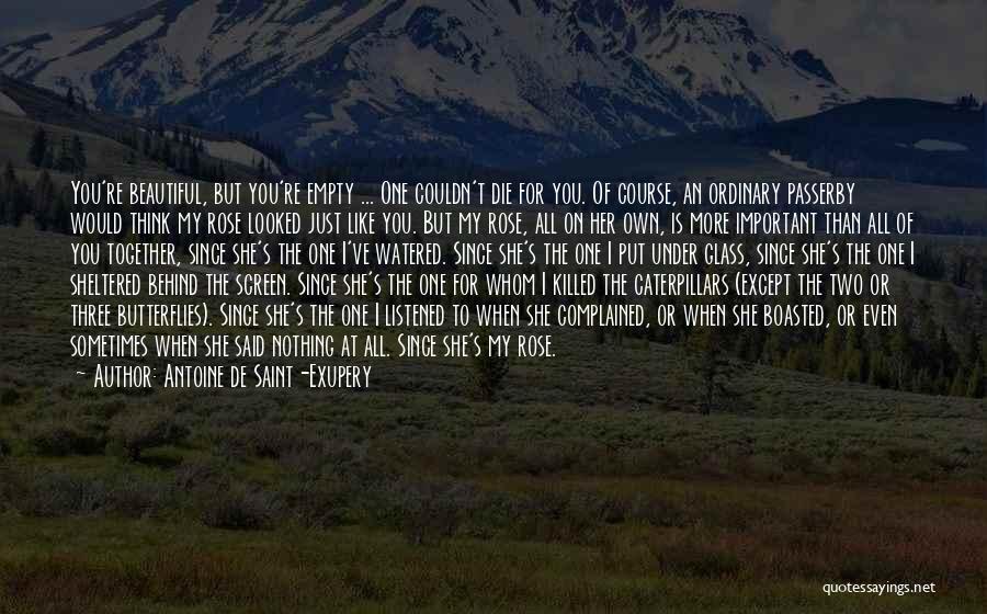 Antoine De Saint-Exupery Quotes 309069