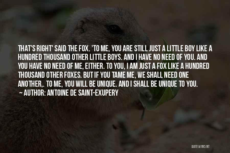 Antoine De Saint-Exupery Quotes 342039