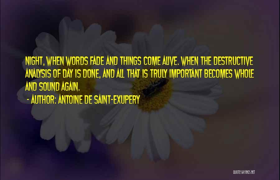 Antoine De Saint-Exupery Quotes 529118