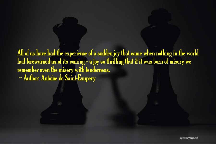 Antoine De Saint-Exupery Quotes 649332