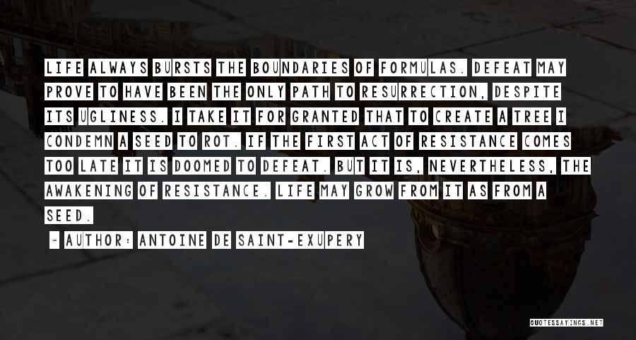 Antoine De Saint-Exupery Quotes 820555