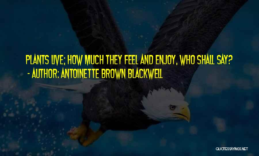 Antoinette Brown Blackwell Quotes 578202