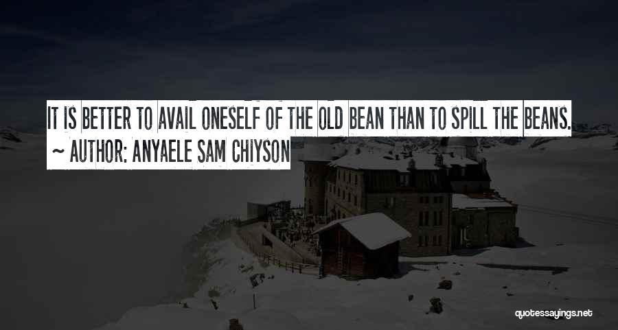 Anyaele Sam Chiyson Quotes 220663