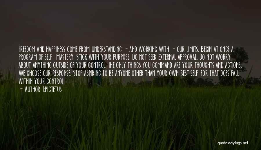 Anything For Your Happiness Quotes By Epictetus