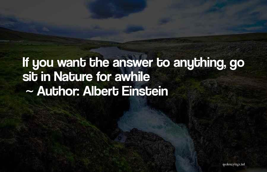 Anything Goes Quotes By Albert Einstein