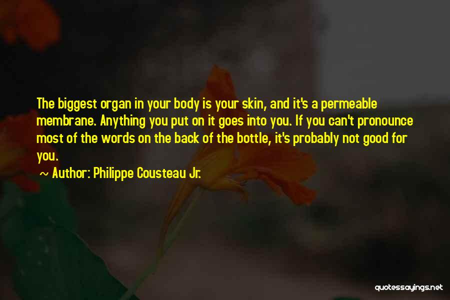 Anything Goes Quotes By Philippe Cousteau Jr.