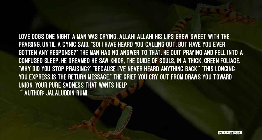 Anything He Wants Quotes By Jalaluddin Rumi
